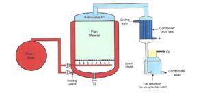 Steam Dist Diagram