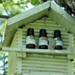 Essential Oils Shelf Life slider