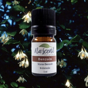 A 5ml bottle of Benzoin essential oil in front of a Benzoin tree