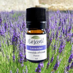 A 5ml bottle of Lavender Officinalis essential oil in front of Lavender plants
