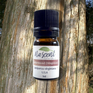 A 5ml bottle of cedarwood essential oil in front of the trunk of a cedar tree