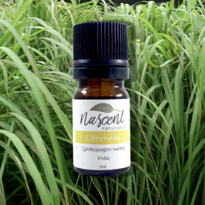 A 5ml bottle of citronella essential oil in front of a field of citronella