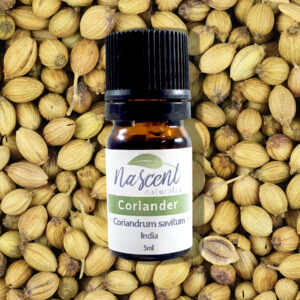 A 5ml bottle of Coriander essential oil in front of a background of coriander seeds