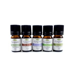 5ml bottles of Bergamot, Ho Wood, Lime, Alpine Lavender and Spearmint in a line against a white background.